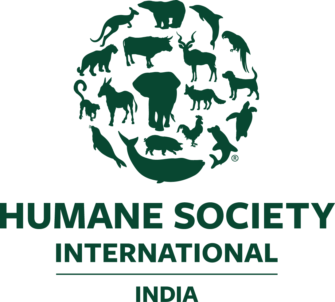HSI India Logo 2021